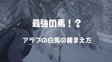 RDR2 アラブの白馬