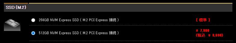 カスタマイズ・購入2